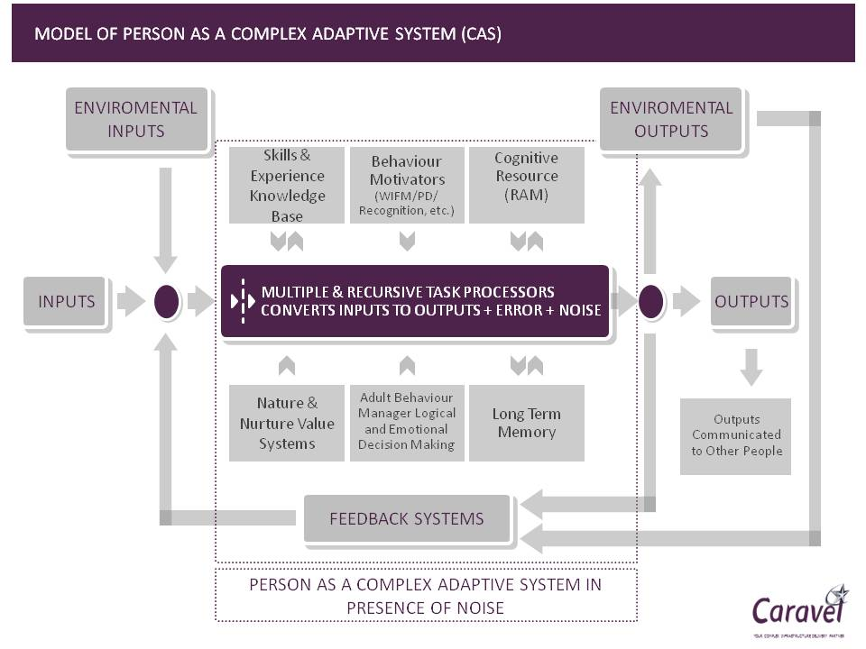 Model of a Person as a Complex Adaptive System